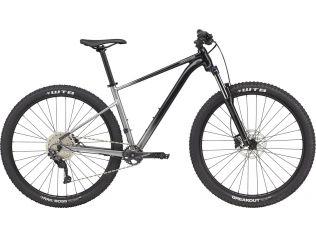 Bicicleta Cannondale Trail SL 4 2021 gray